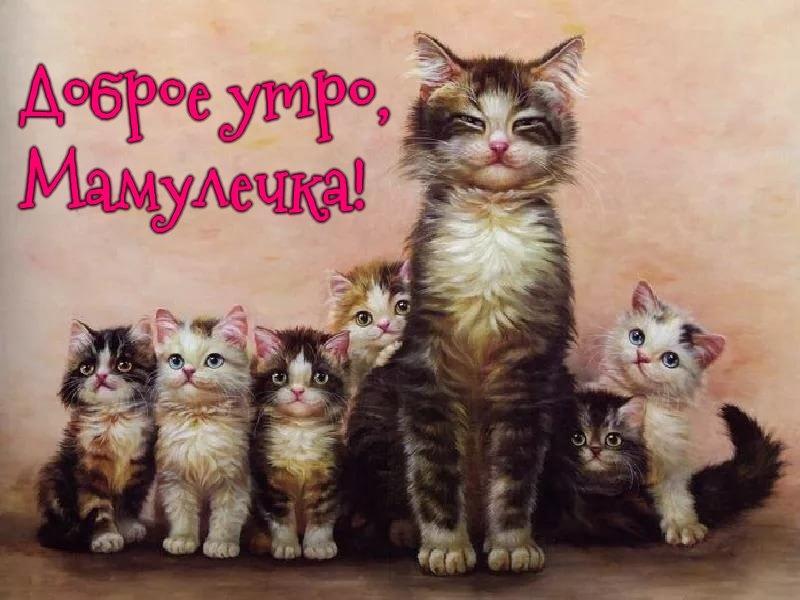 Доброе утро, мама, мамуля, мамулечка - картинки, открытки, пожелания