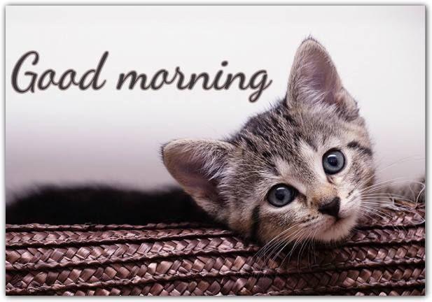 good morning открытки