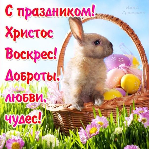 Христос Воскрес открытки и картинки