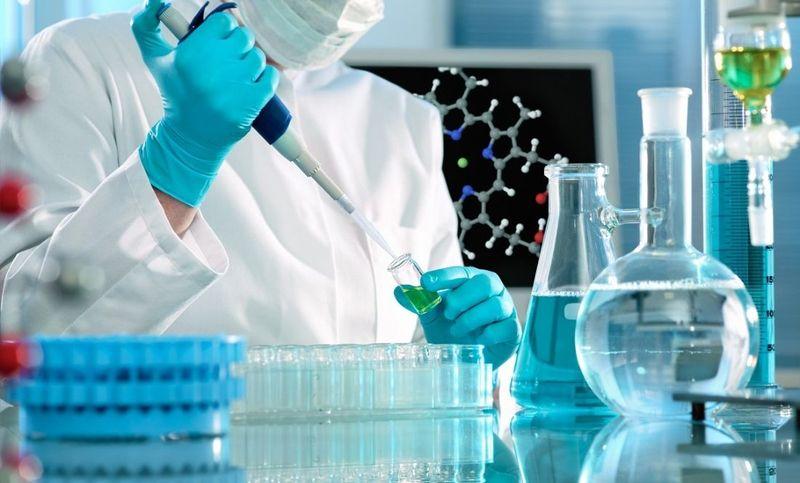 Использование стволовых клеток при выращивании зубов