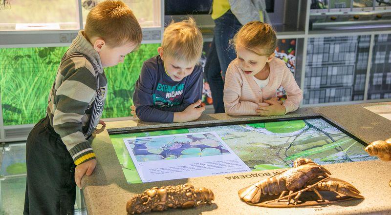 Экспозиции для детей
