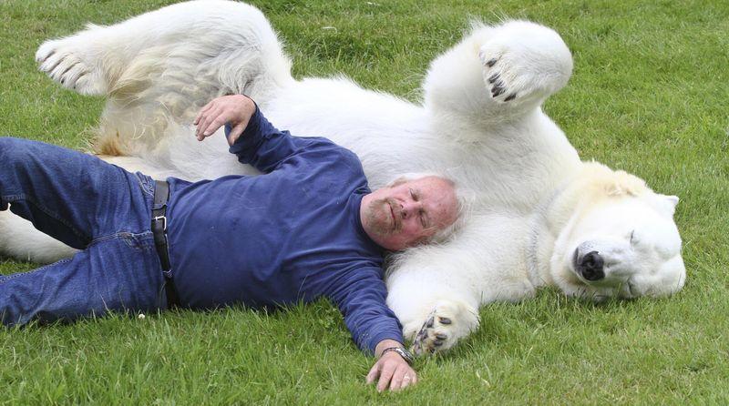 Дружба человека и белой медведицы