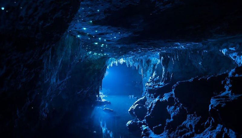 Пещеры светлячков