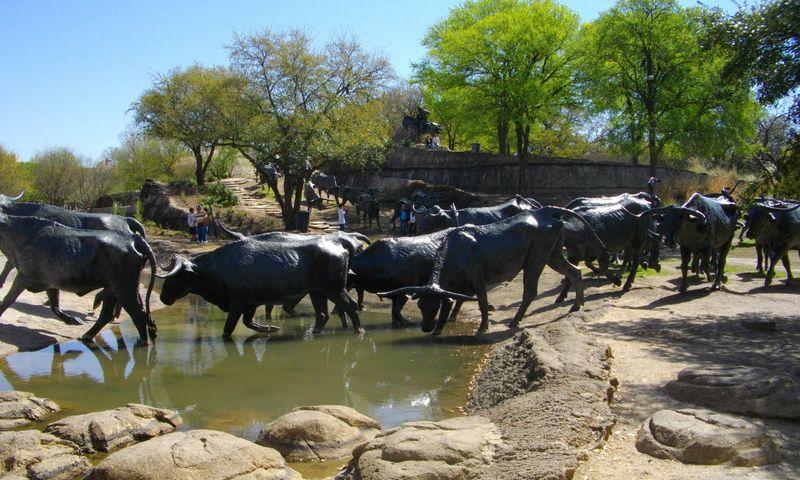 Cattle-Drive (Перегон скота)