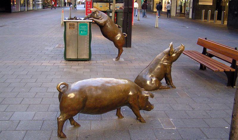 Поросята около торгового комплекса Rundle Mall