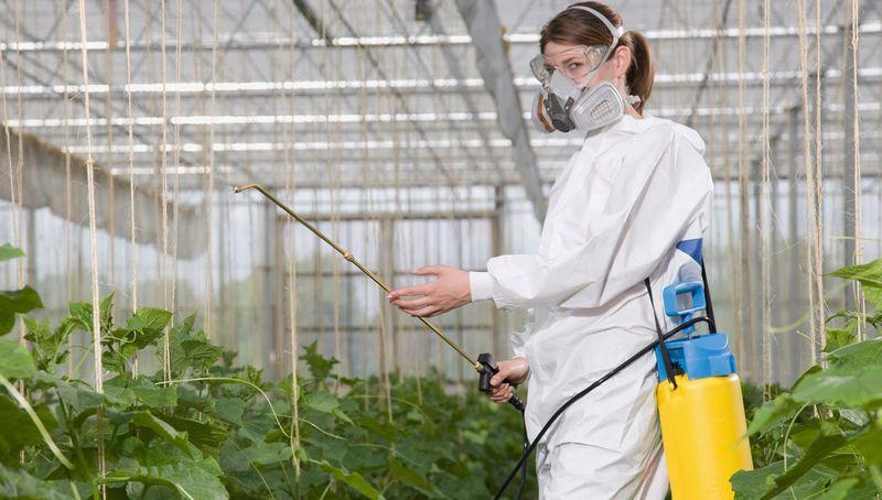 Опыление растений