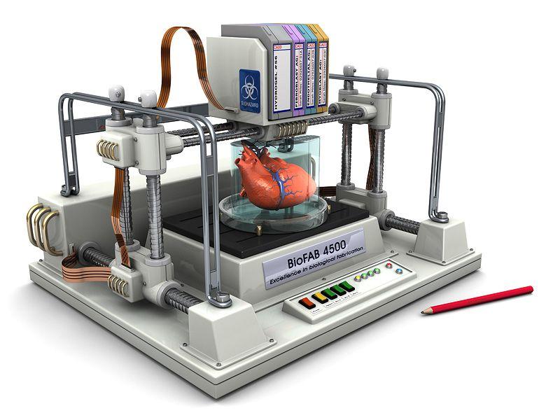 Принтер для живых тканей