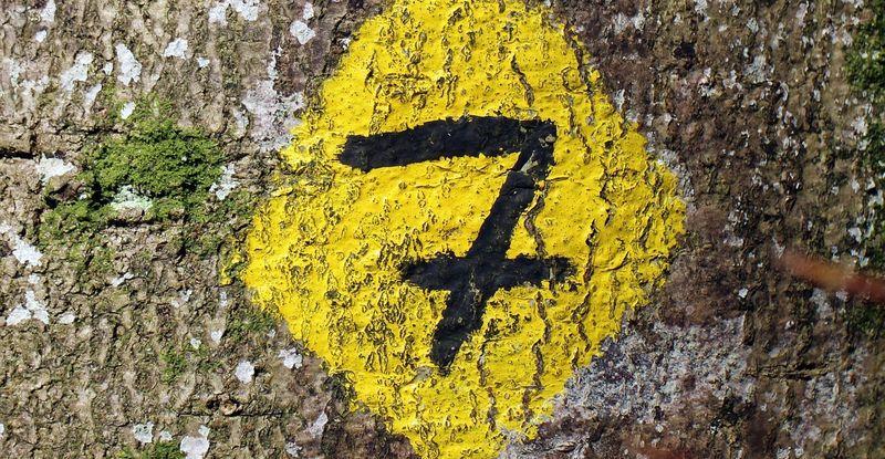 Священное число 7
