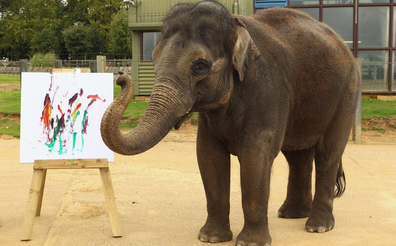 Слон рисует