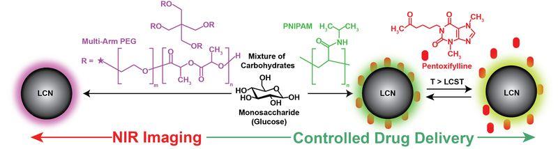 Микромолекулы углерода для доставки лекарств