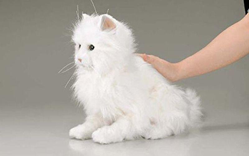 Кошка робот