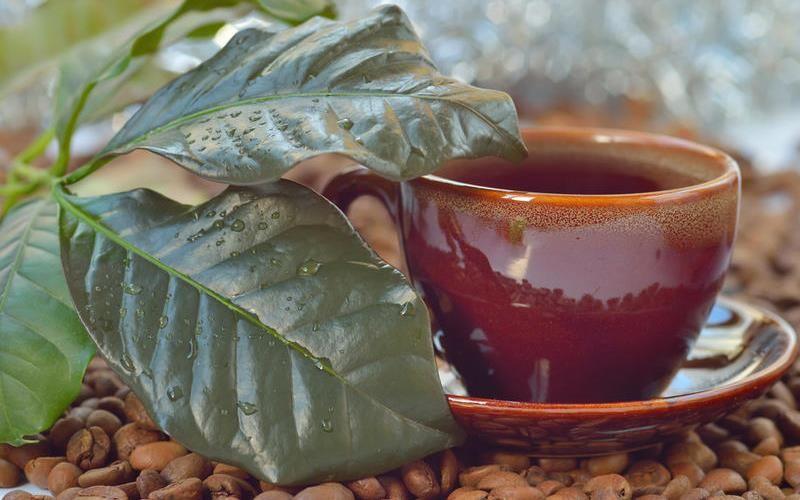 Кофейный чай