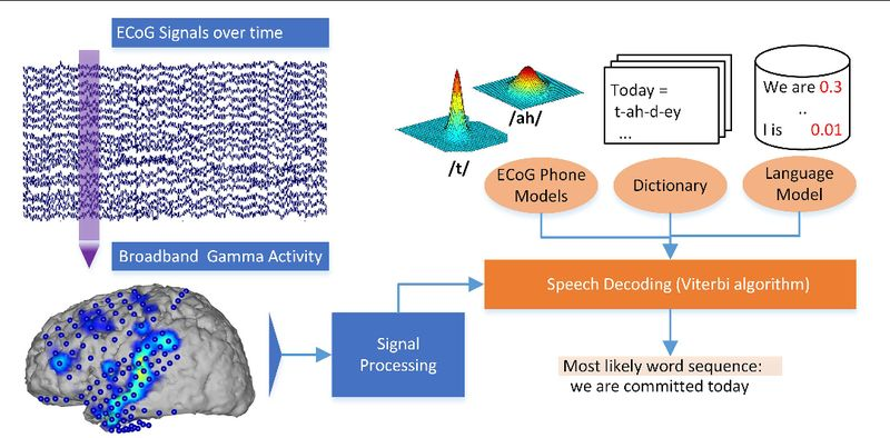Нейрокомпьютерный интерфейс Neural Signals