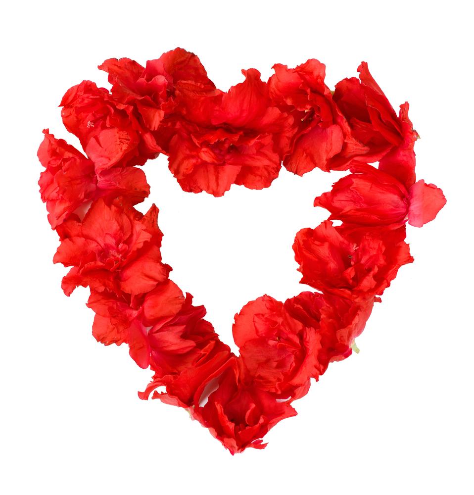 цветы в виде сердца