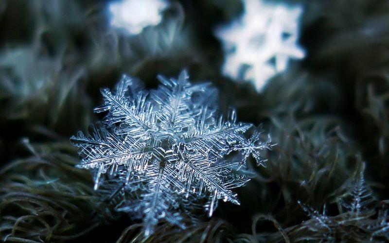 Снежные кристаллы