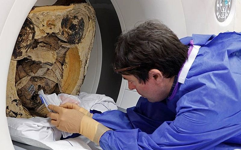 Мумия внутри статуи