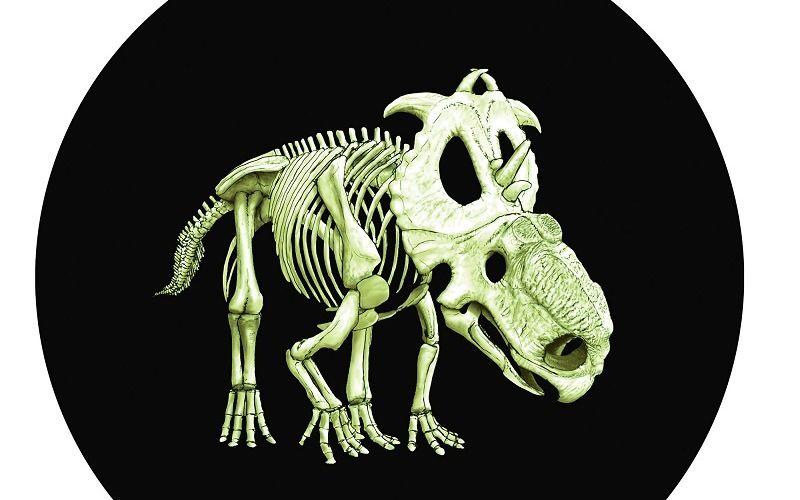 "Канадская монета ""Скелет динозавра"""