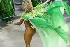 udivitelnoe-v-brazilii-7