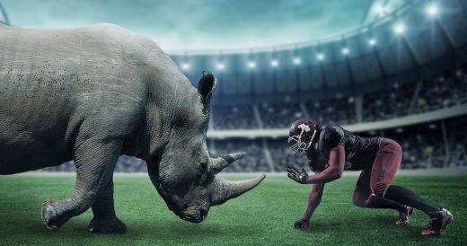 Носорог против футболиста