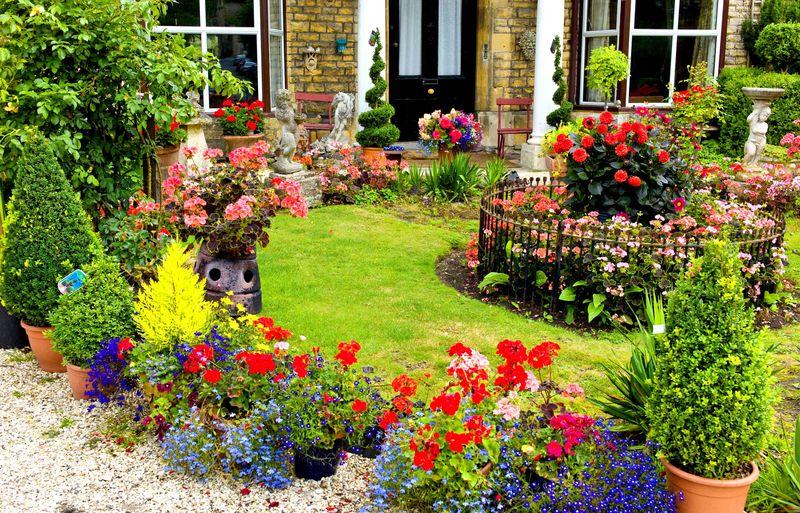 Сочетание садовых и комнатных растений