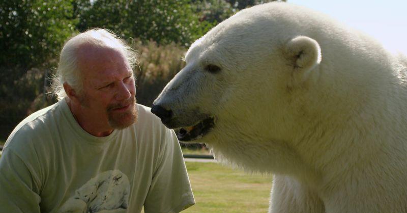 Марк Дюма и белая медведица Эйджи