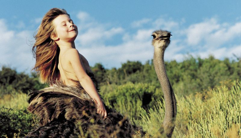 Типпи Дегре  и страус