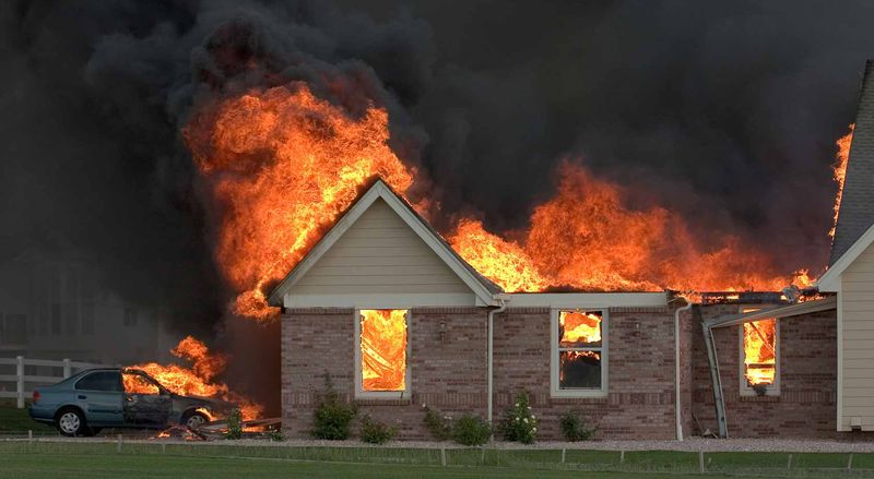 Кошка Кети предупредила семью о пожаре