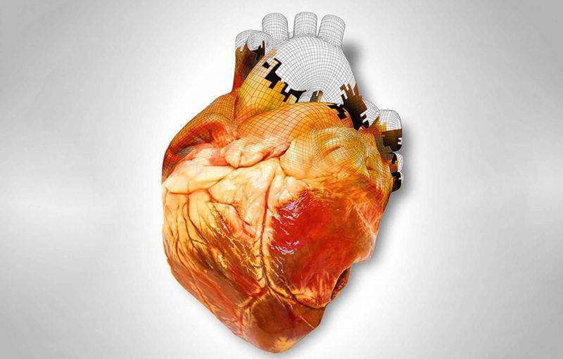 3D printing of internal organs