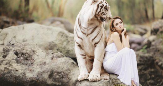картинка женщина и тигр
