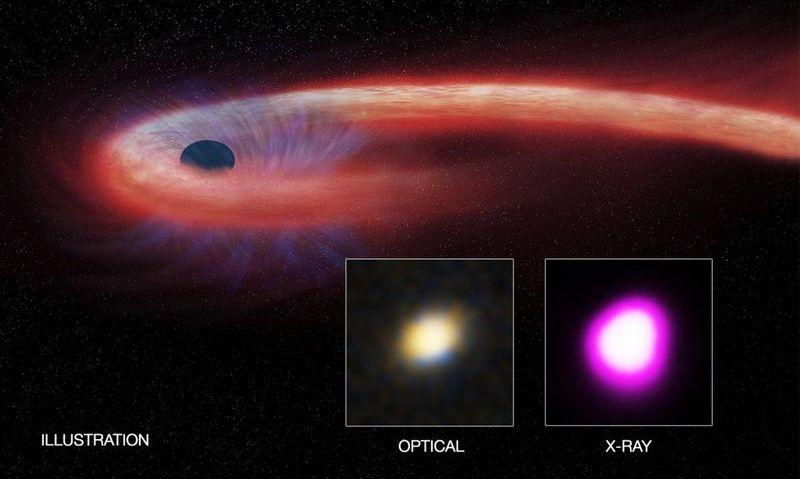 Поглощение звезды черной дырой