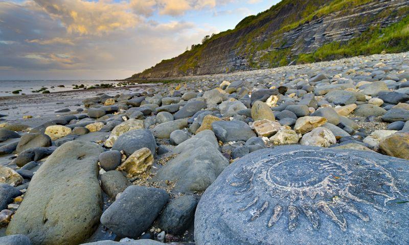 Пляж Лайм Реджис (Великобритания)