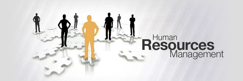 dissertations in human resource management Theory of human resources dissertation topics there are fundamental differences in the approach to human resources (hr), for example the 'hard' and `soft' versions of human resources management (hrm).
