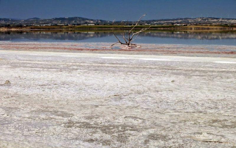 Соленое озеро на Кипре