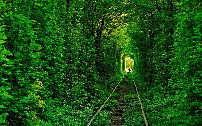 Туннель любви в Ровно