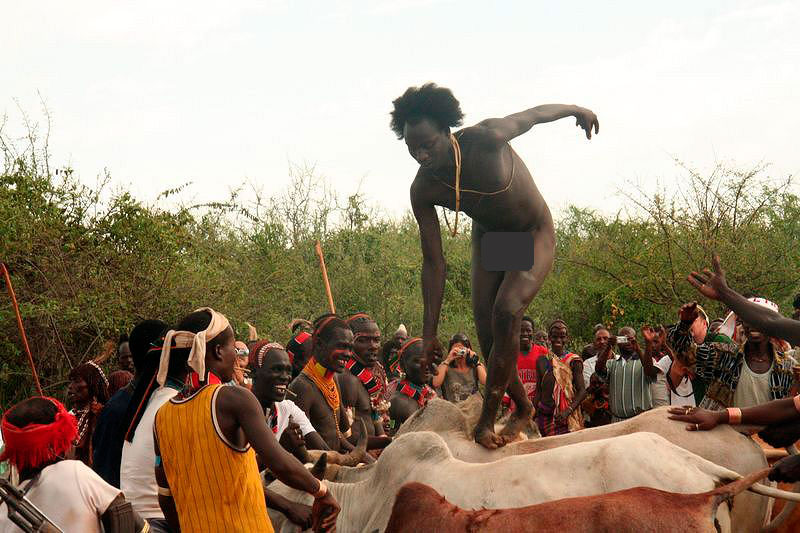 The initiation of a young man into a man in the Hamar tribe