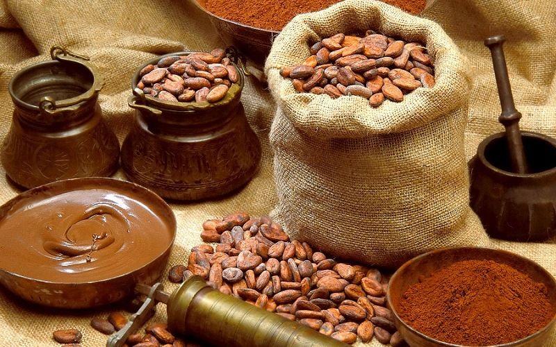 Какао бобы – денежная единица ацтеков