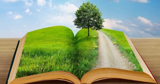 Удивительные факты о книгах