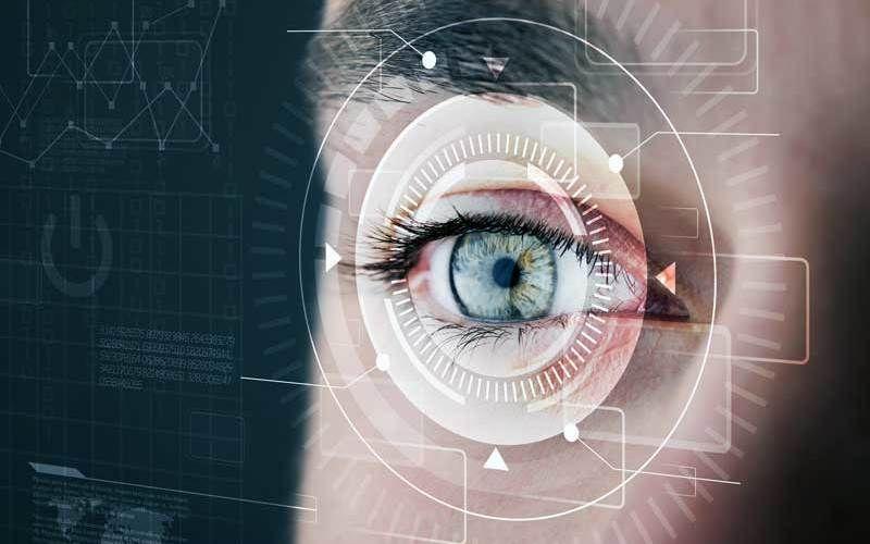 Organ of vision - eyes