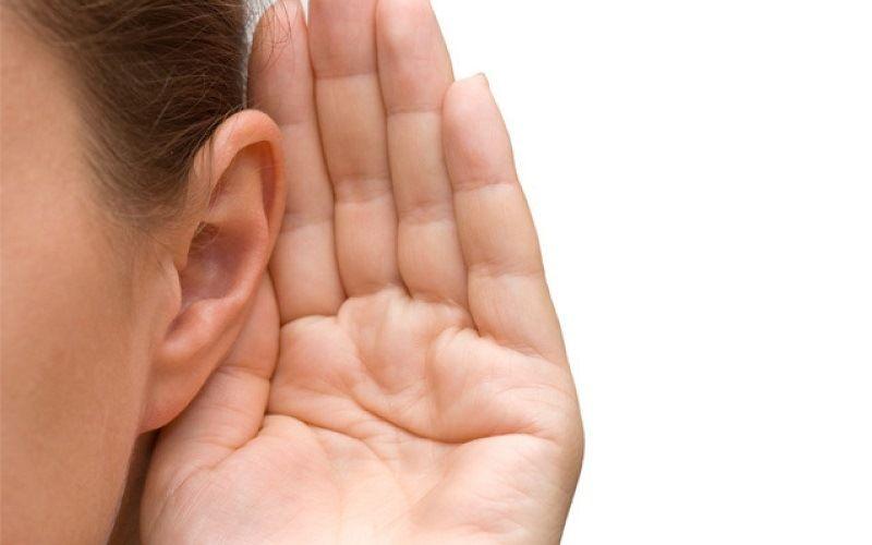 Hearing organ - ears