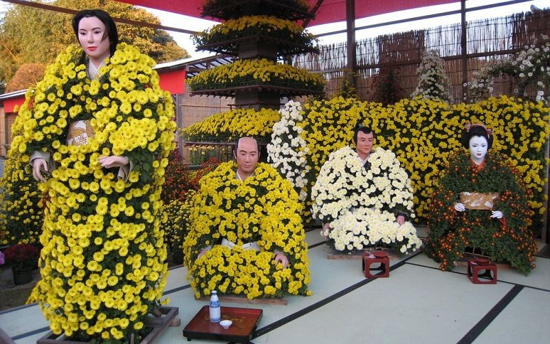 Праздник хризантем в Японии