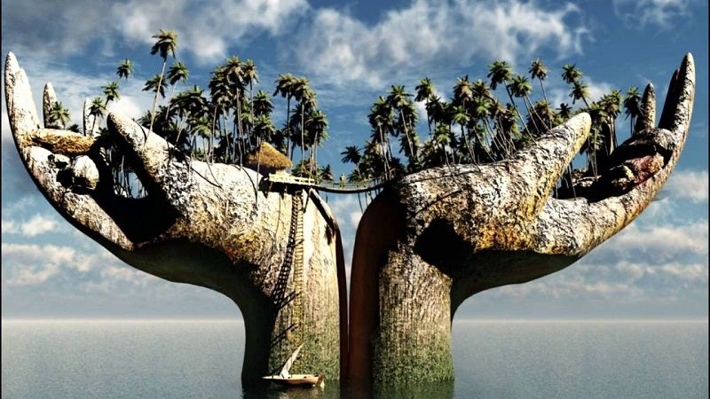 Удивительные факты о деревьях