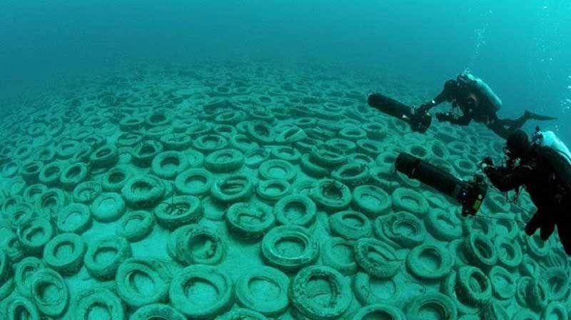Кладбище автомобильных шин у берегов Флориды