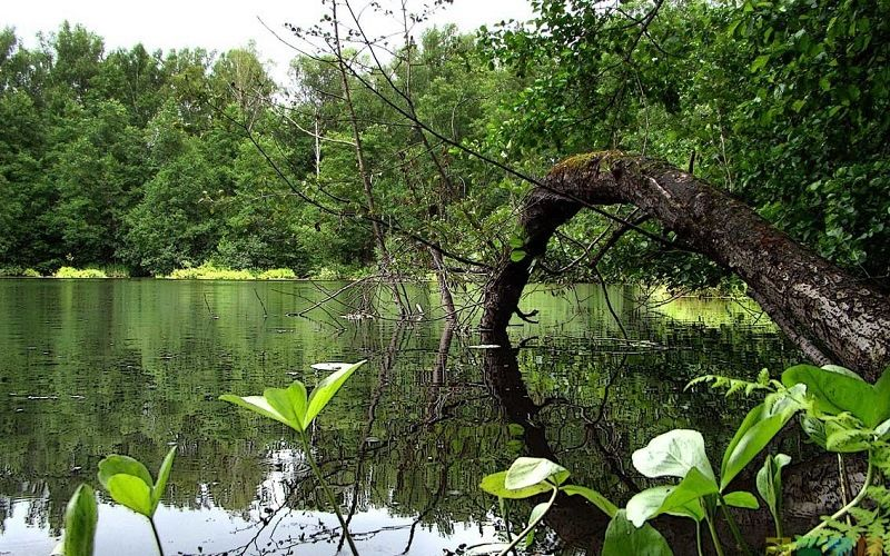 Озеро Шайтанка на Урале