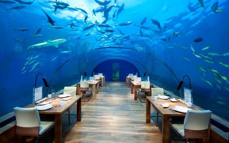 Кафе на Мальдивах «Conrad Maldives Rangali Island»