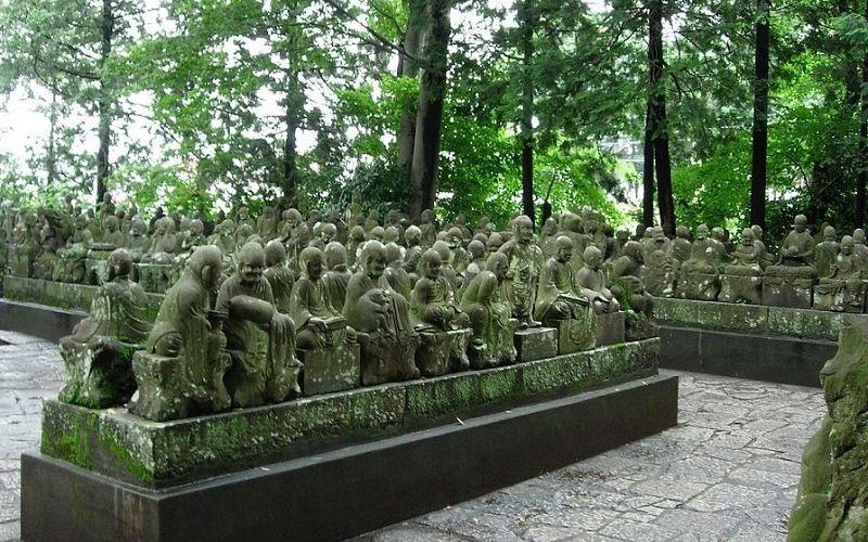 Сад 500 Раканов
