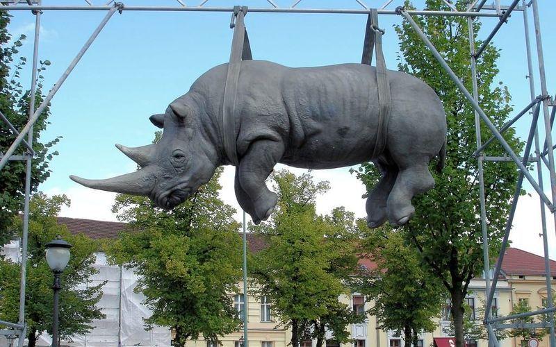 Висящий носорог