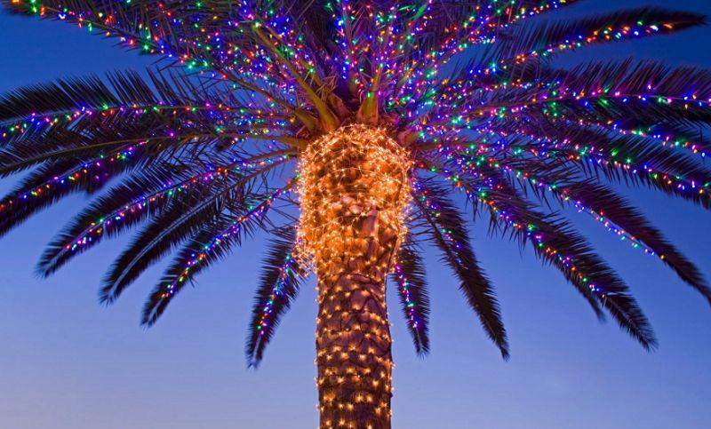 Новогоднее африканское дерево