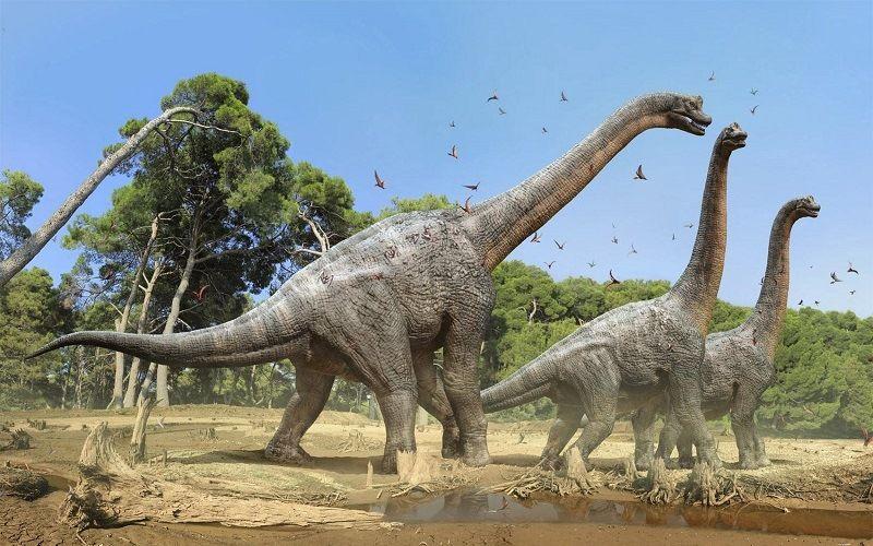 Брахиозавры