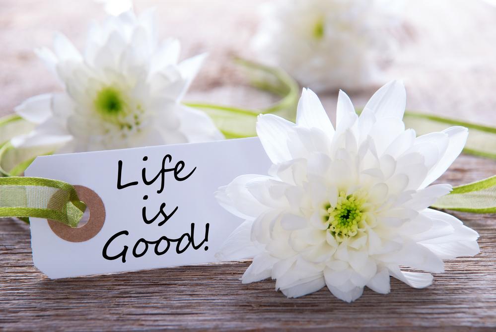 жизнь хороша