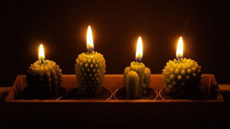 Свечи кактусы